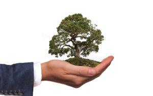 Umwelt in deiner Hand