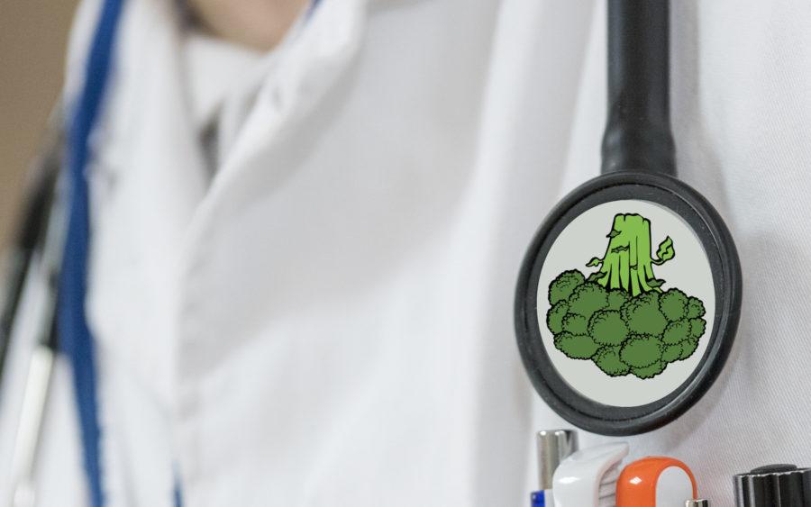 Vegan Arzt Vertrauen