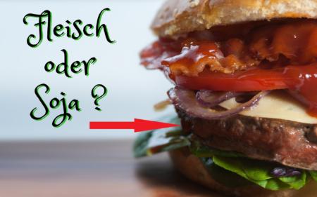 Verbot Bezeichnung wie Fleischwaren Vegan Teaser pix 1834192