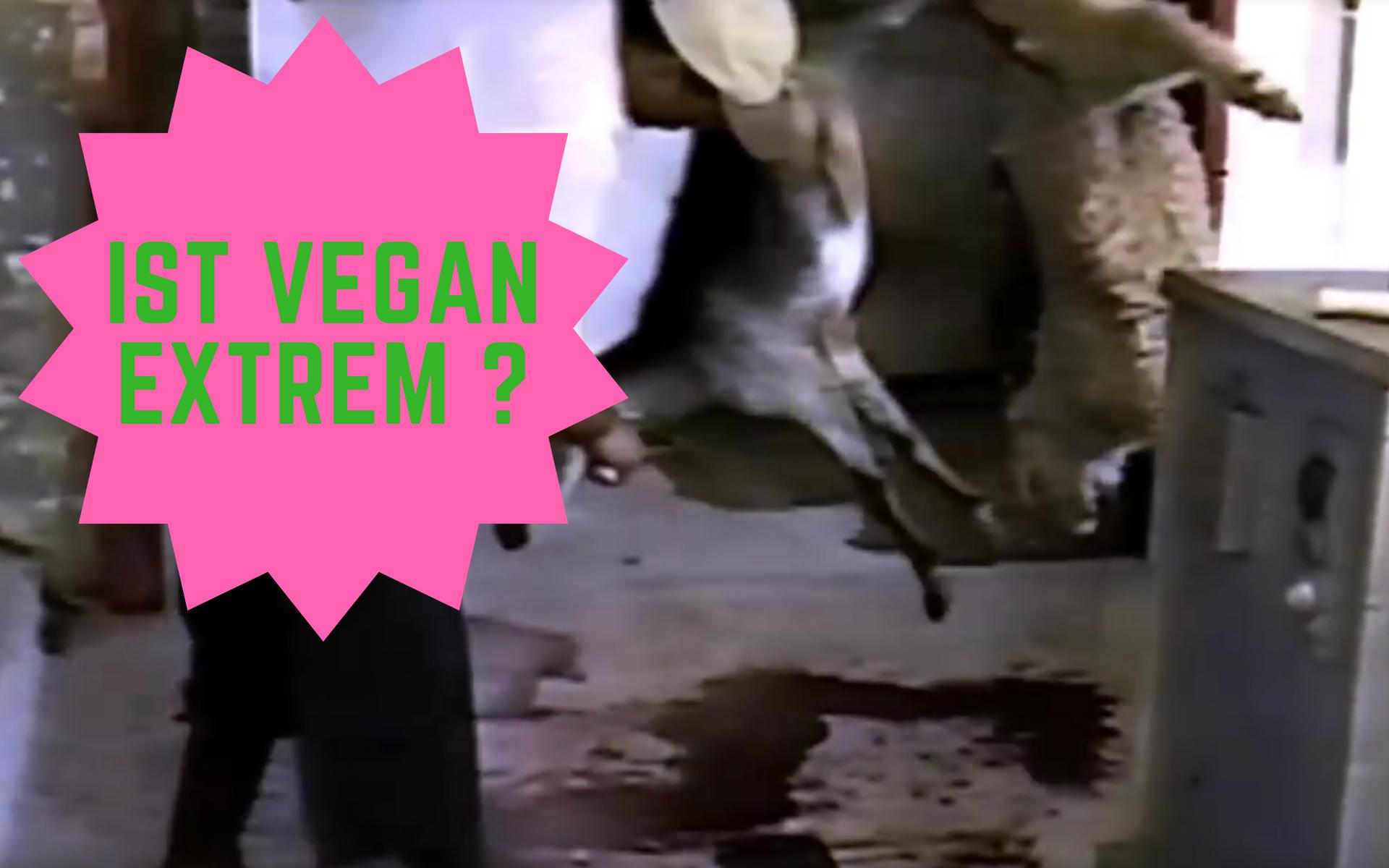 """""""Vegan ist extrem – reicht nicht schon Vegetarisch?"""""""