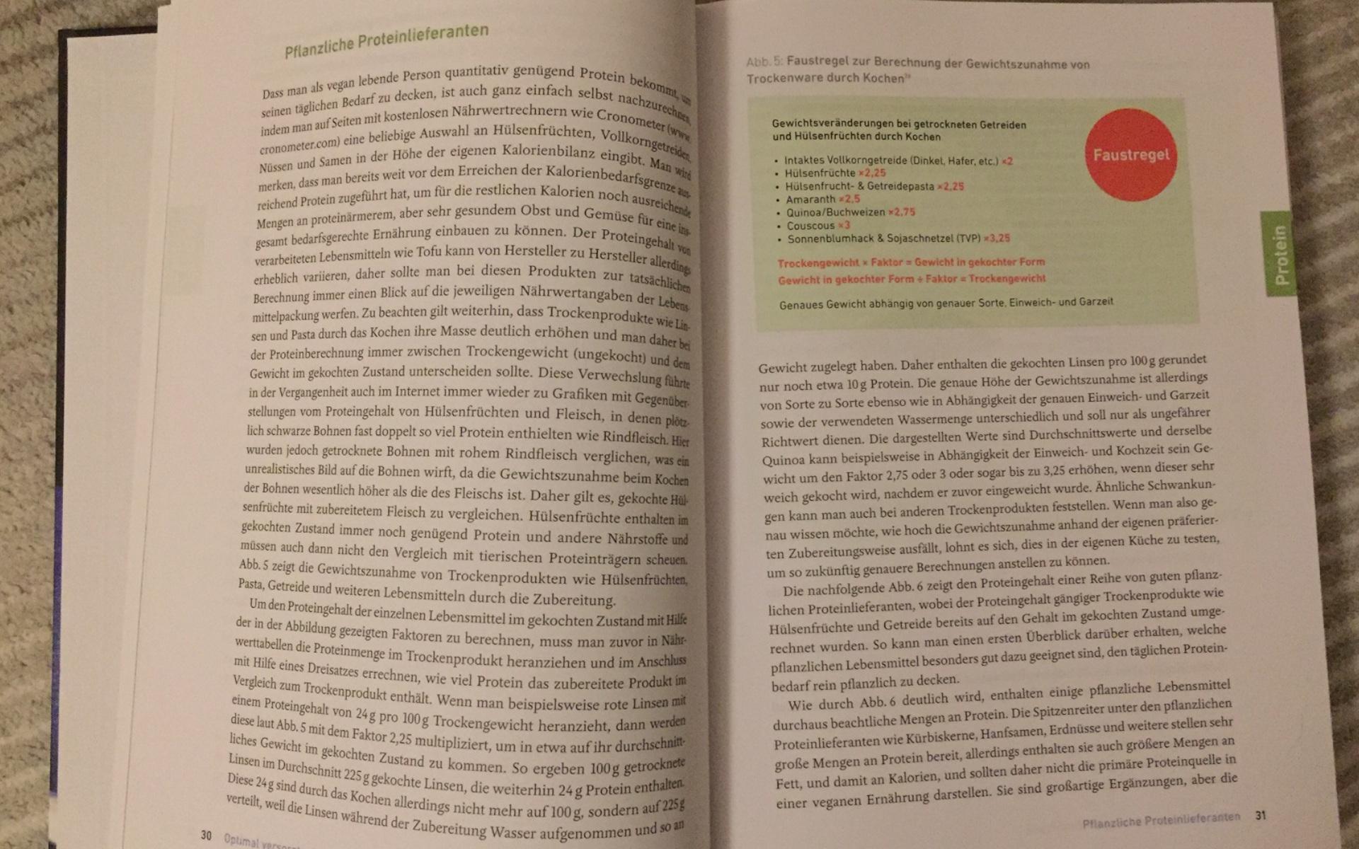 Niko Rittenau Vegan Klischee Ade Buch Rezension Pflanzliche Protein Lieferanten