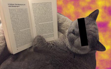 Tierrechtsbewegung Klaus Petrus Buch Kritik Cover Front Rezension Katze