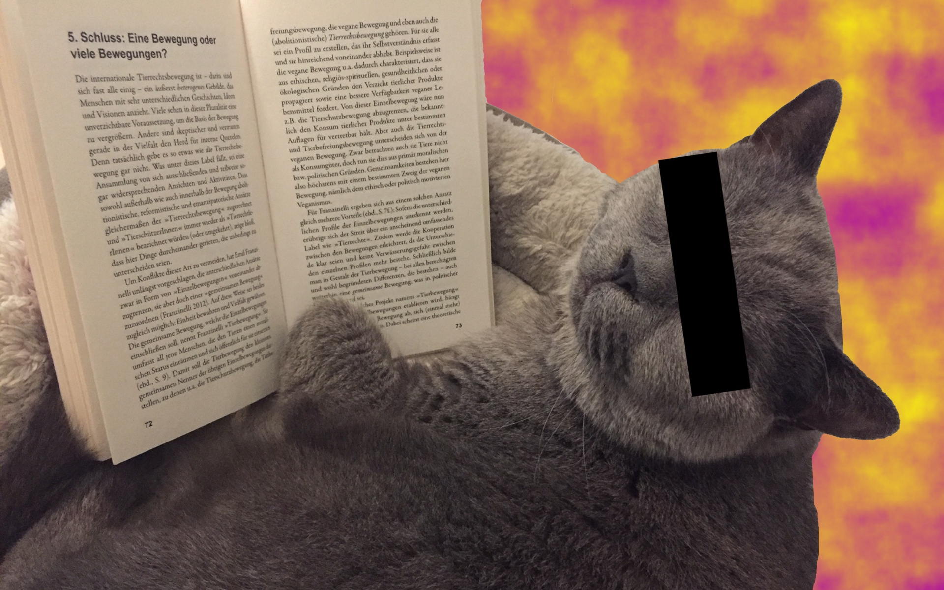 """Tierrechtsbewegung – Geschichte, Theorie, Aktivismus"" – wie gut ist das Buch?"