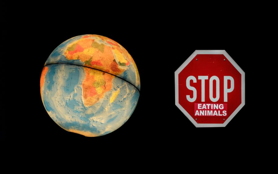 Vegane Welt Utopie Stop Eating Animals Globus